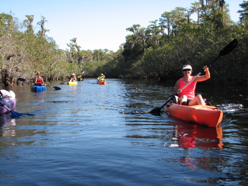 Kayakers on the Suwannee.