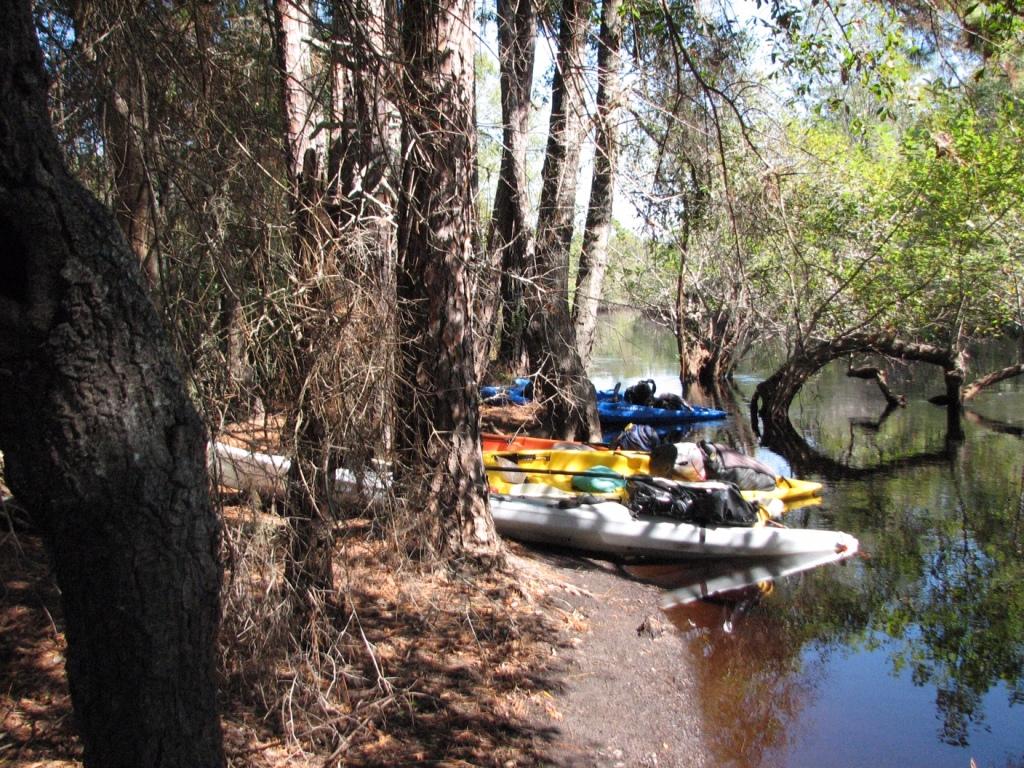 Kayaks pulled ashore